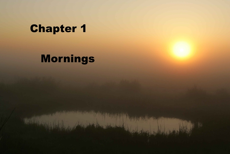 Chapter 1: Mornings